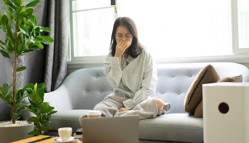 Air Clean At Home